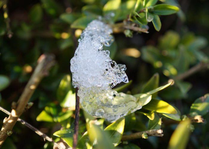 Eisig: Eiskristall