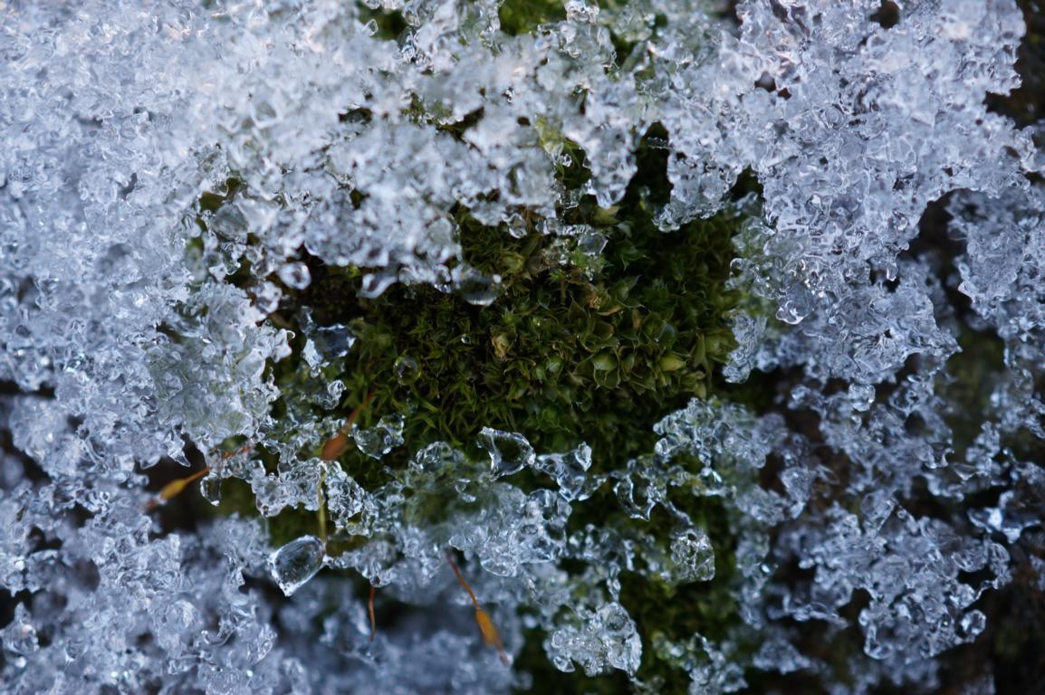 Eisig: Eiskristalle