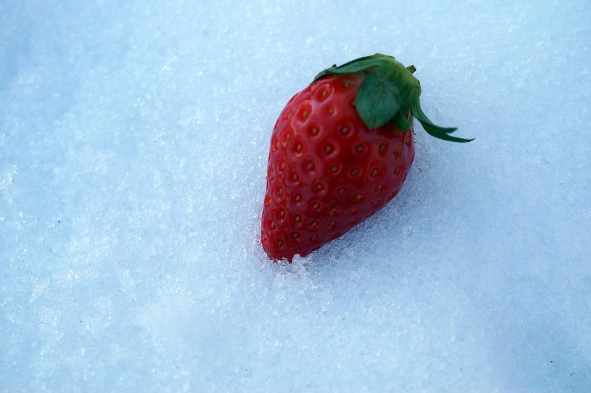 Eisig: Kalte Erdbeere