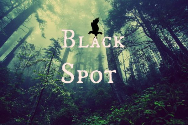 Black Spot Kritik