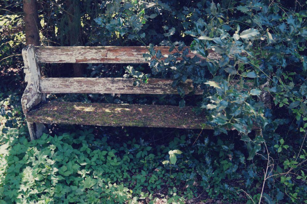 Sitzgelegenheiten: Vergessene Bank
