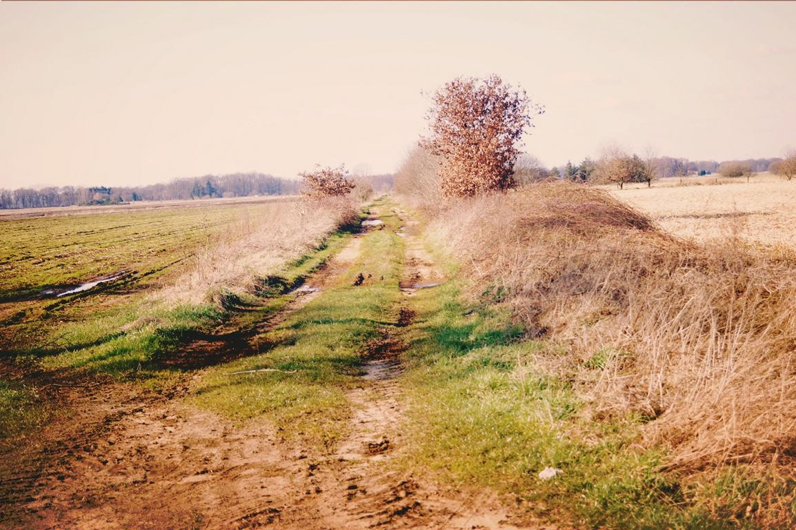 Wege: Feldweg