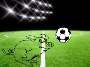 Fußballspruch des Jahres