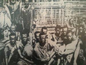 Maji-Maji-Aufstand