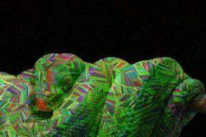 Mythen, Sage, Aberglaube: Regenbogenschlange