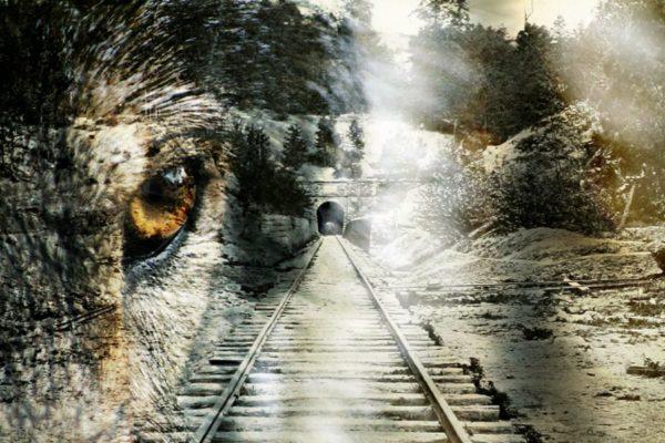 Schienenwolf