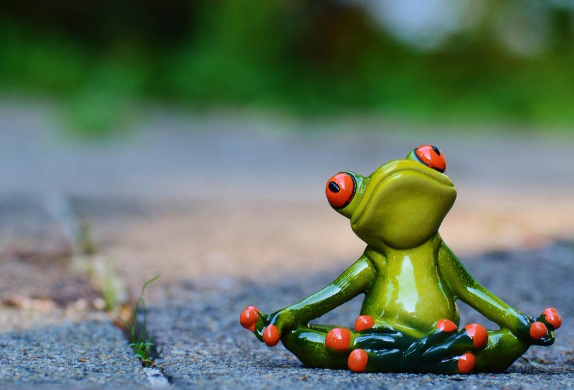 Frösche machen Yoga - Zeit und Geister